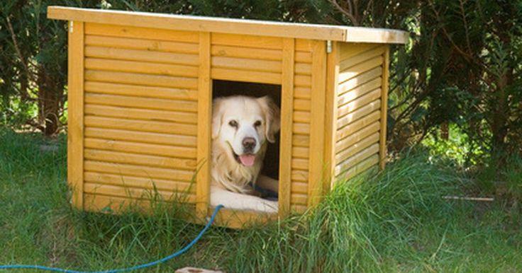 Ideias para fazer sombra em canis. Pode ficar muito quente fora de casa durante o verão, e por isso, se você pretende manter seu cão em um canil ao ar livre, ele precisa ter uma sombra. Assim como os seres humanos, os cães podem ter insolação, e o calor afeta especialmente algumas raças, como pugs e bulldogs, mais do que as outras. Há várias maneiras de ajudar o seu cão a ficar ...