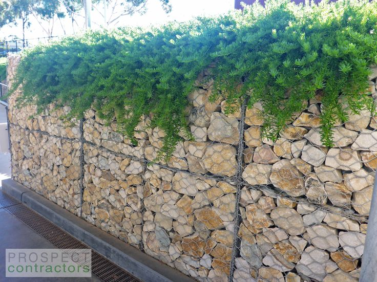 Gabions With Overhanging Plants.