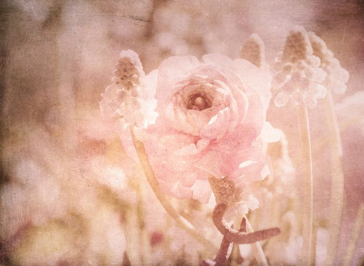 Spring time Still life by Tanja Riedel - Photo 145768305 - 500px