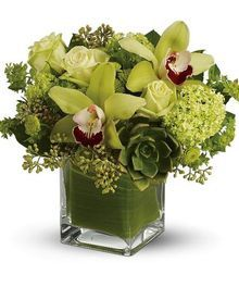 """Sunflowers & Hydrangea Flower Arrangement,  The green abundance of the rainforest is captured in this lovely bouquet brimming with exotic green cymbidium orchids, roses and premium whites and creams. Artfully arranged in a glass cube vase.  Arrangement Details:  A refreshing mix of flowers including green cymbidium orchids, roses and chrysanthemums accented with white field fillers & eucalyptus. Delivered in a clear glass, leaf-lined cube vase. Bouquet is approximately 12"""" W x 11"""" H"""