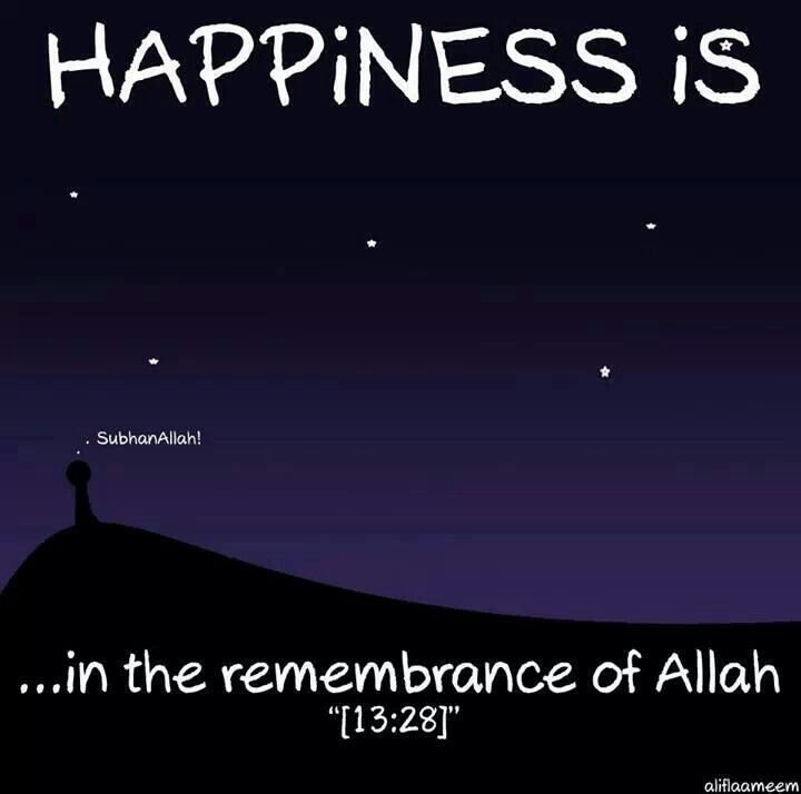 Happiness. ttps://www.facebook.com/pages/Quran-n-Sunnah-is-my-way-to-Jannah/479230152143249  join my page for awesome islamic knowledge