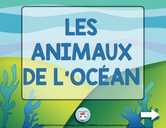 French Ocean Animals Vocabulary Quiz