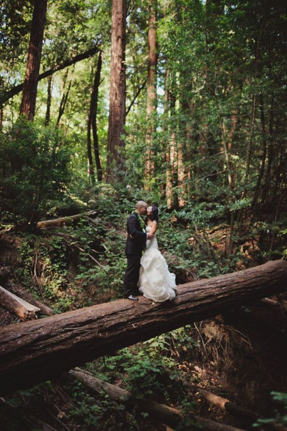 55 Awesome Redwood Forest Wedding Venues For Perfect ...
