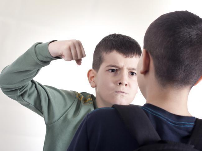 Sí, el título es muy fuerte. Pero como padres ya estamos acostumbrados al término bullying, que es el acto de acosar, molestar, ridiculizar y agredir, incluso físicamente, a otra persona. Es un continuo y deliberado maltrato que recibe un niño mientras el abusador es observado, y m