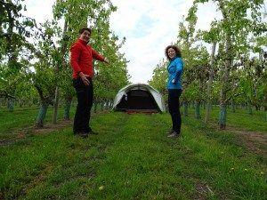 Kampeer hotspot: onze tent tussen de perenbomen. Check op onze blog het volledige avontuur.