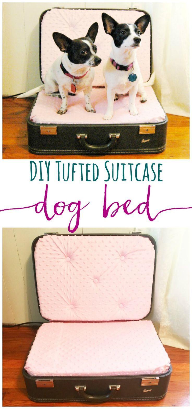 Dog hogging the bed - Diy Tufted Suitcase Dog Bed