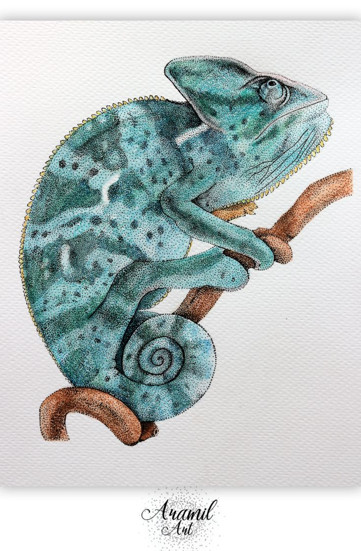 Chameleon drawing, created by using about a thousand dots and colored with watercolour pencil. Art by Petra Jánosi. Come and check on FB. :)  https://www.facebook.com/aramilart