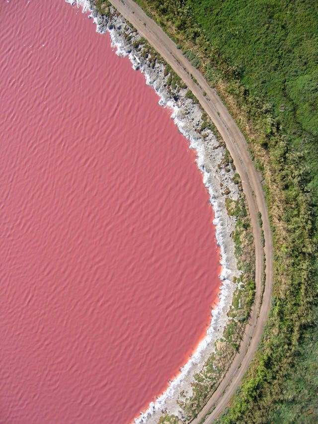 LAGO     Retba Lake (Lago Rosa), en Senegal, está situado en el norte de la península de Cap Vert. El color de batido de fresa se debe a la alga Dunaliella salina que da el color al agua durante la estación seca. El lago también es famoso por su alto contenido de sal, permitiendo a la gente flotar en su superficie.               vivir