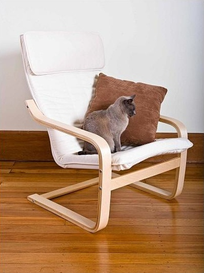 This is the chair I have in the nursery (Ignore the cat and the brown cushion - I don't have those!) I'm looking for cushions to set off the chair.