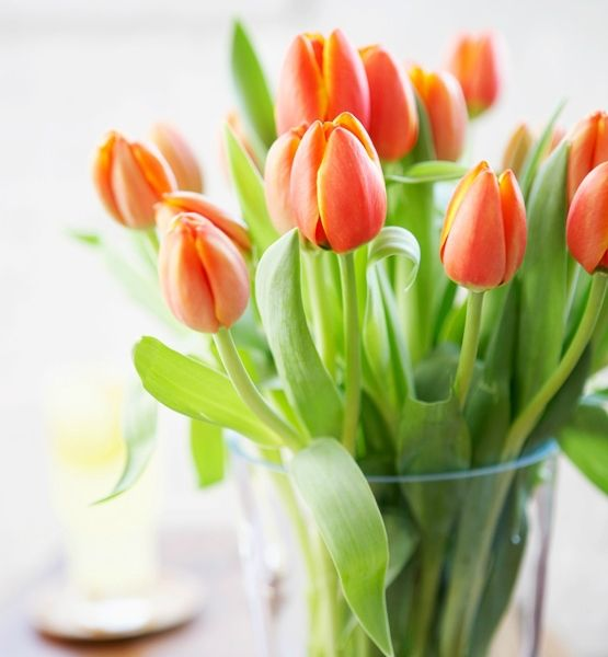 10 Easy ways to bring spring into your home