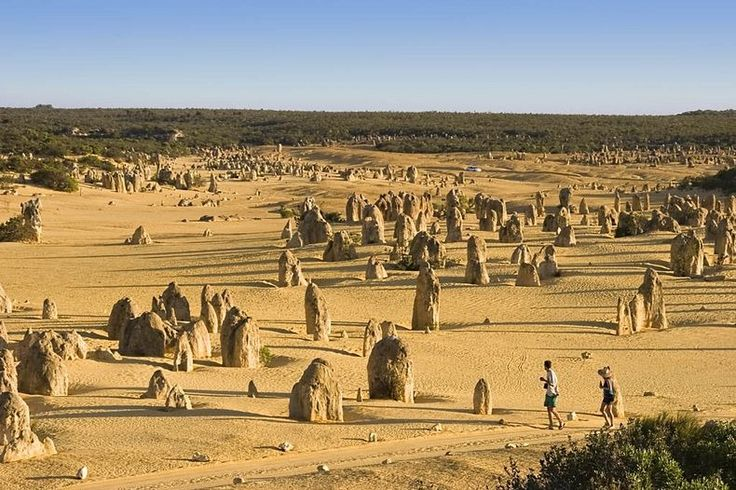 Pinnacles Desert in Nambung National Park, Australia | Amusing Planet These amazing natural limestone structures were formed approximately 25,000 to 30,000 years ago, after the sea receded and left deposits of sea shells. Over time, coastal winds removed the surrounding sand, leaving the pillars exposed to the elements.