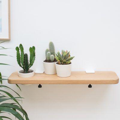 étagère murale en chêne conçue pour accueillir un cactus : scie cloche !