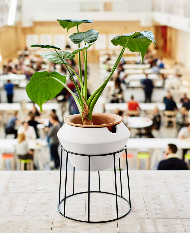 264 best ikea images on pinterest bedrooms ikea 2018 for Flower pot made by waste material