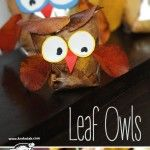 LEAF+OWLS