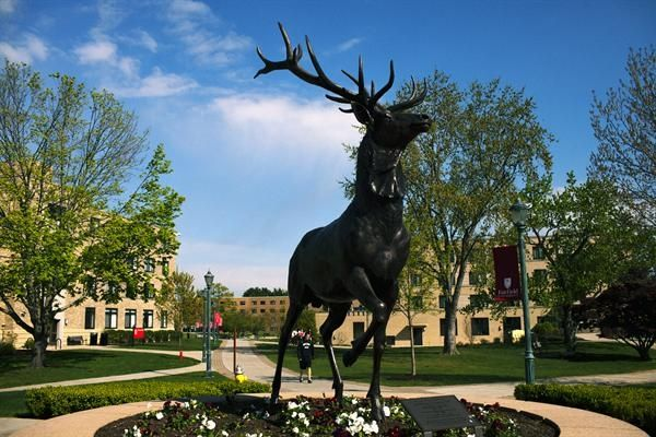 17 Reasons Not To Go To Fairfield University | Her Campus