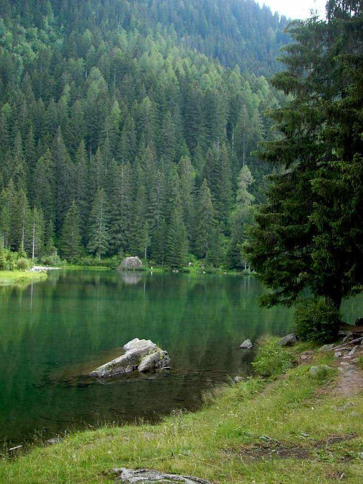 Lago dei caprioli - Pellizzano (Tn)