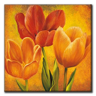 orange tulips i