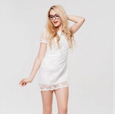 Newly Embroidery Organza Lace Short Sleeve Straight Short Dress