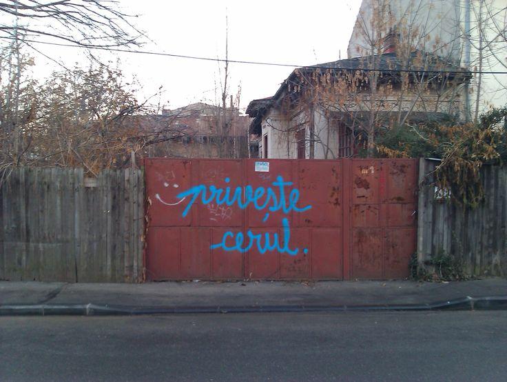 IMAG0416