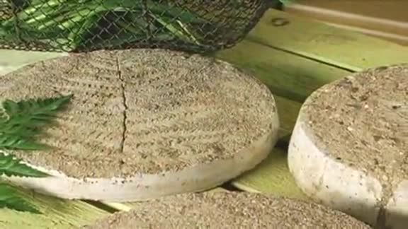 It's easy, fast, and fun to create your own stepping stones from a couple of containers and a bag of quick-mix concrete. Really make the pavers something special by casting leaves, stones, shells, and more into the surface.