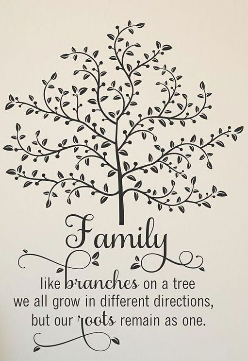 'Family Like Branches' Wall Quote Wall Art