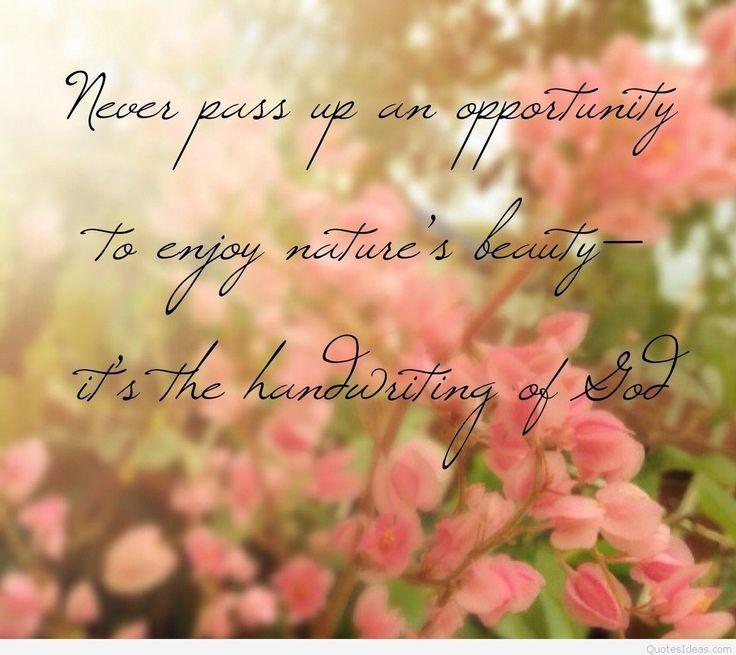 Beautiful Life Quotes Life Quotes: Unusual Buhdda Quotes Small