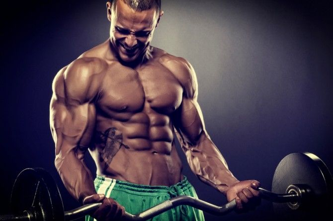 improving body composition: optimizing fat loss & muscle building, Muscles