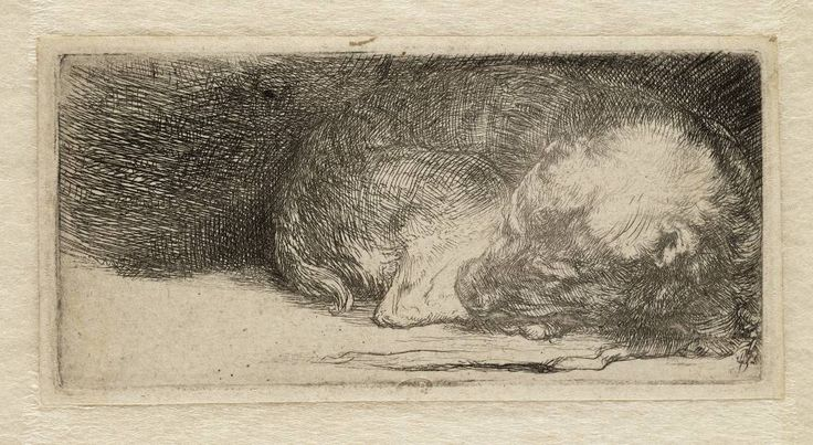 Rembrandt Exhibition Shell : Best images about rembrandt drawings etchings on