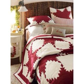 Pottery Barn Red Feather Quilt