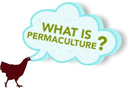 Courses & Events | Verge Permaculture