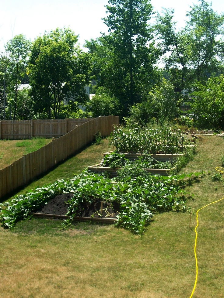 How To Build Terraced Garden Beds