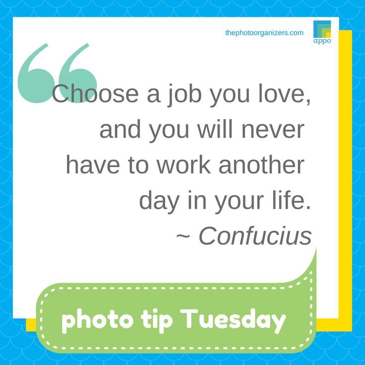 Photo Tip Tuesday: A New Profession