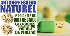 Deux poignées de noix de cajou est l'équivalent thérapeutique d'une dose de Prozac. L'acide aminé essentiel L-tryptophane se décompose en anxiolytique dans votre corps. Plus important encore, le tryptophane est transformé en sérotonine, l'un des neurotransmetteurs les plus importants de votre corps. La sérotonine procure un sentiment de bien-être et de douceur, ou comme diraient …
