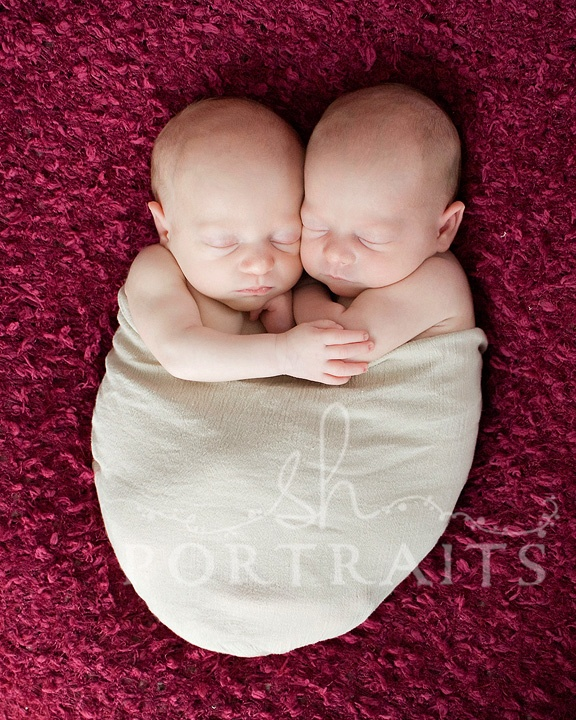 adorable twin baby photo