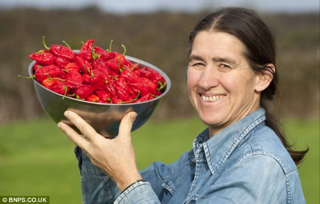 Chilli out: Joy Michaud with a bowl of the hot, hot, hot Dorset Naga chillies.