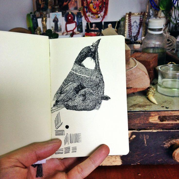 Pajaro / Bird [tinta / ink]