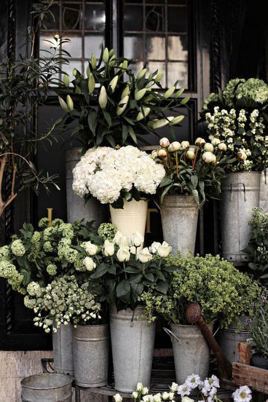 White flowers in galvanized metal pails.