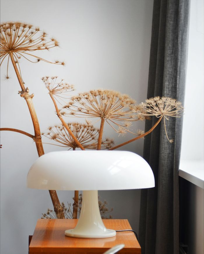 Bloesem Living: dried wildflowers and plants giant hogweed