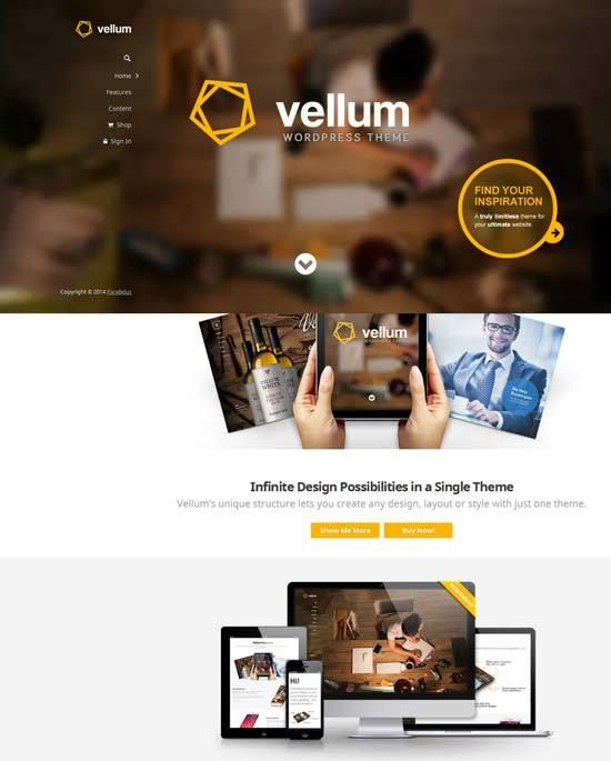 50+ Best Responsive Premium WordPress Themes