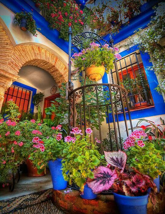 Каждый год испанский городок Кордова открывает свои внутренние дворы общественности, показывая визуальный банкет красочных цветов, каменных мозаик. Во внутренних двориках каждый года расцветает жасмин и апельсин превращая воздух в экзотический аромат.