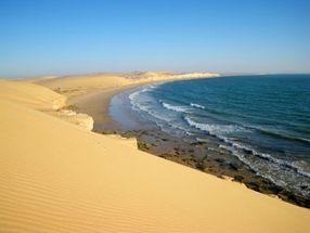 Agence désert. Méharée waliba + plage.