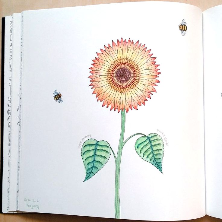 Passion Flower FlowerColoring Books