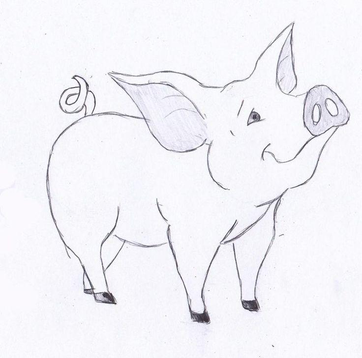 ein-schwein-zeichnen-lernen-dekoking-com …