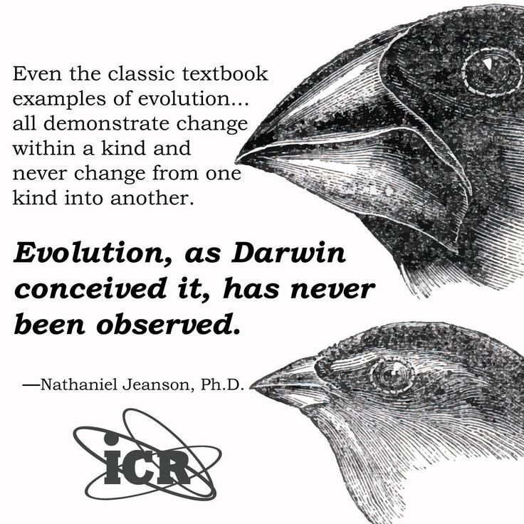 "Institute for Creation Research ""Evolution vs. Darwin"" . . .""variations is limited within kinds."" N. Jeanson Ph.D."