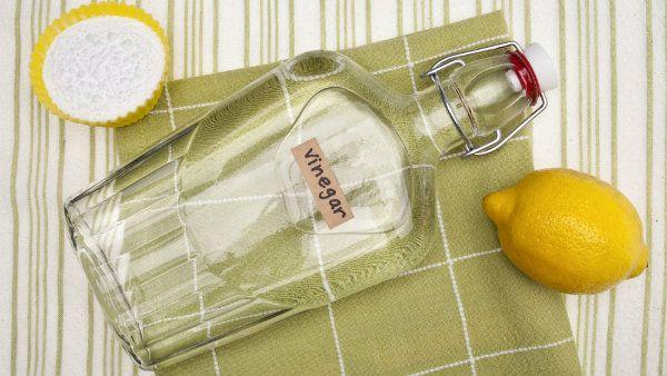 Veja como usar um ingrediente simples para fazer uma grande faxina: vinagre para limpar a casa! desengordurar o fogão, limpar limo, etc. tudo com vinagre!