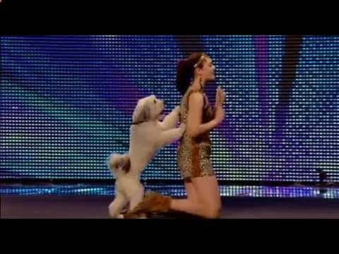 Amazing Dancing Dog YaBaDaBaDoo!-Ashleigh and Pudsey_Britain Got Talent 2012#dog obedience training#how to train your dog#dog training