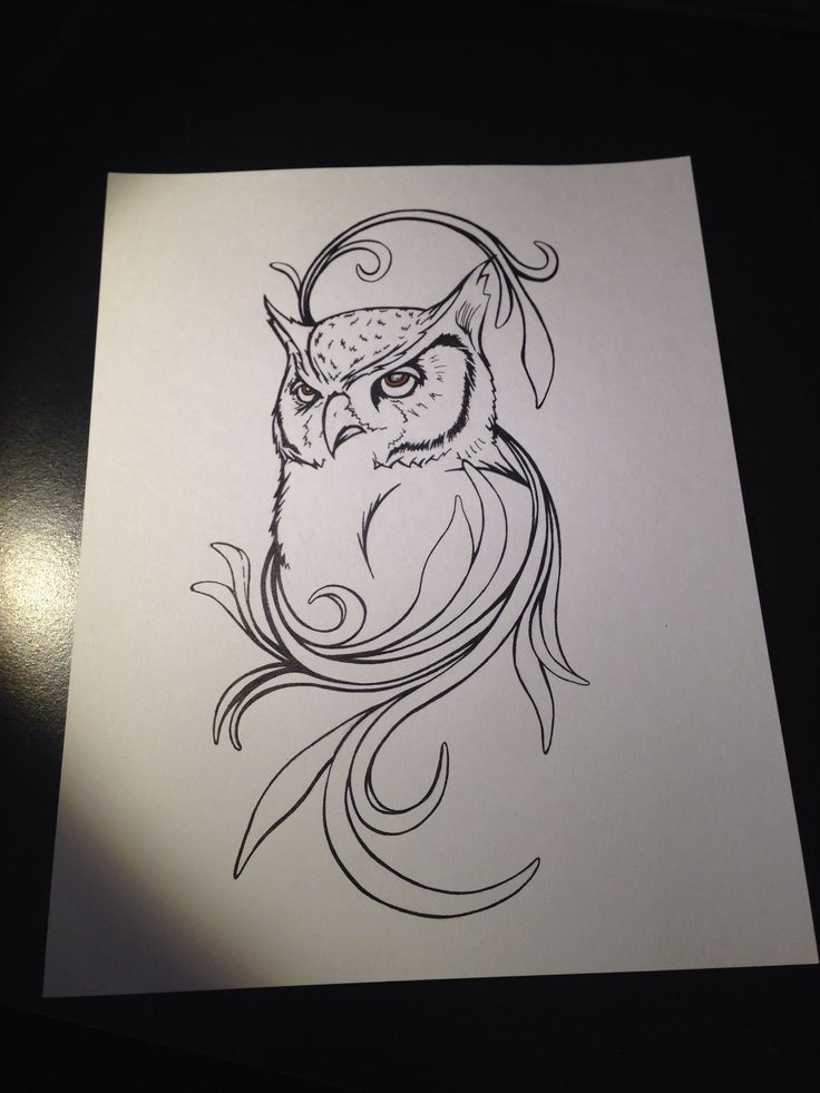 1000 ideas about draw an owl on pinterest how to draw for Owl drawing easy