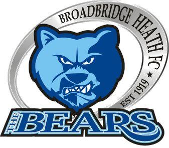 Broadbridge Heath F.C. logo.png