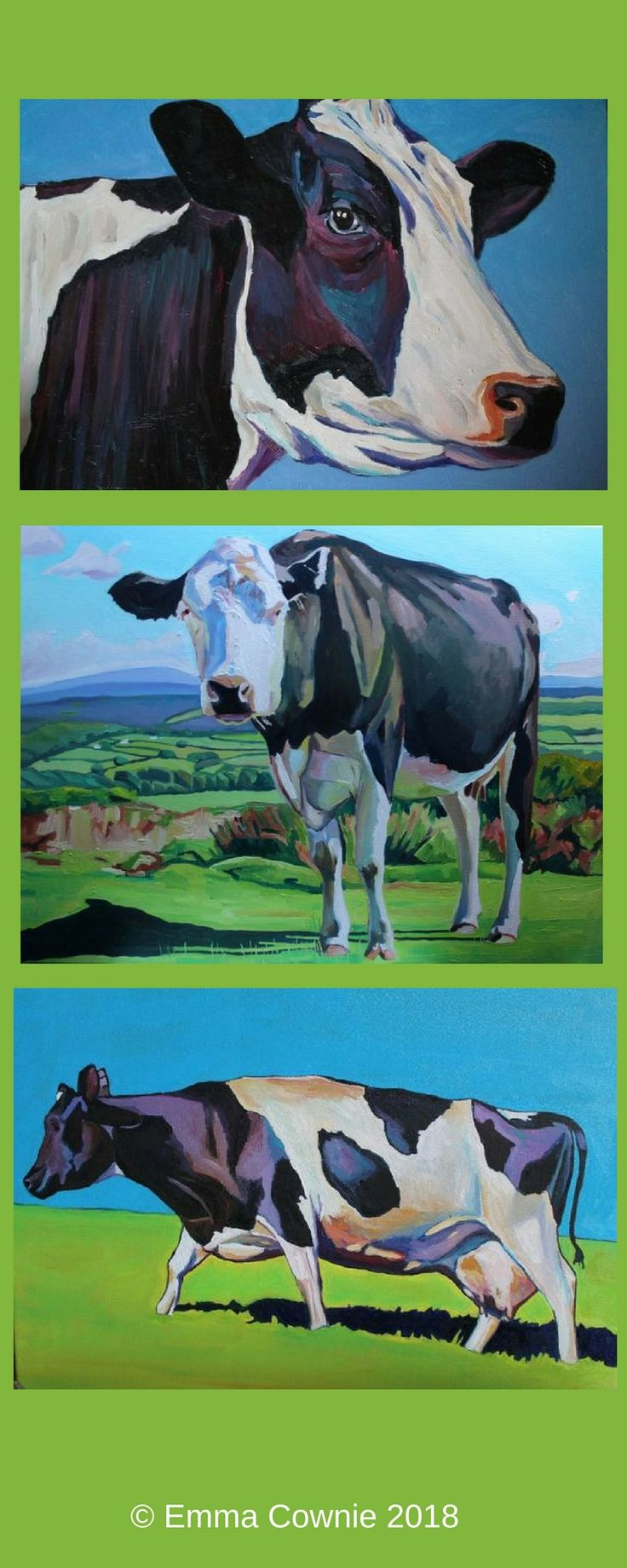 Three cow paintings by artist Emma Cownie