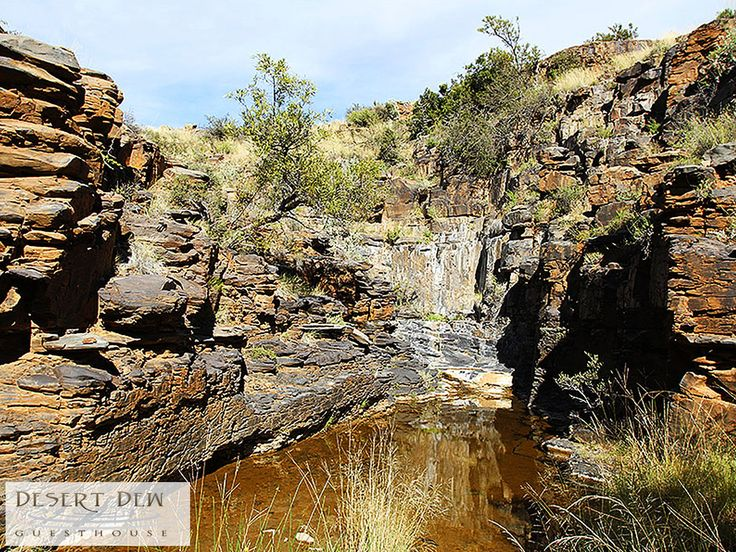 #FunFact - There are also six natural springs on the farm – (hence the name Desert Dew). Link: http://ow.ly/vtyE307XBAb